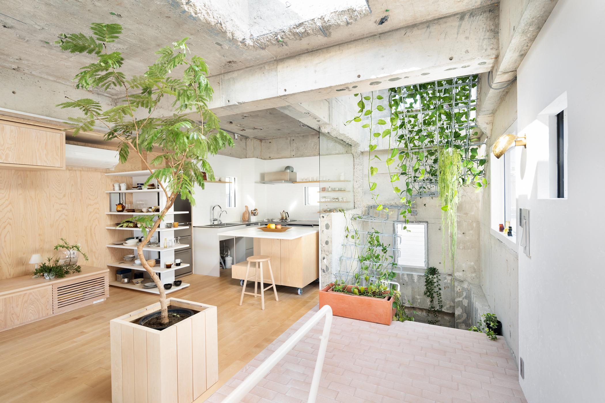 築33年の印刷工場をリノベーションした事務所兼住宅